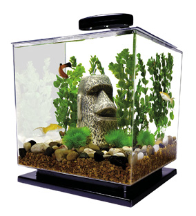 Tetra Cube Betta Fish Tank