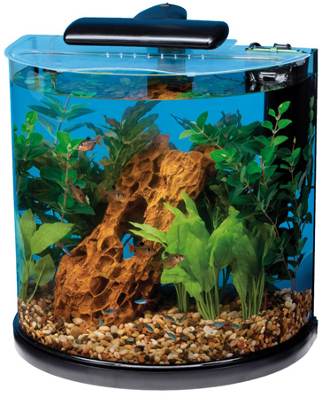 Tetra 10 Gallon Fish Tank