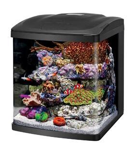 Nano Reef Tank Kit