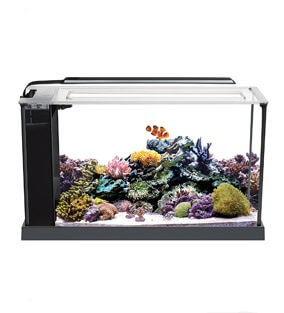 Fluval Nano Reef Tank Kit
