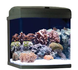 Nano Fish Tank Kit