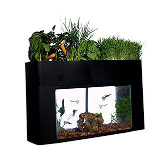 AquaSprouts Garden Kit