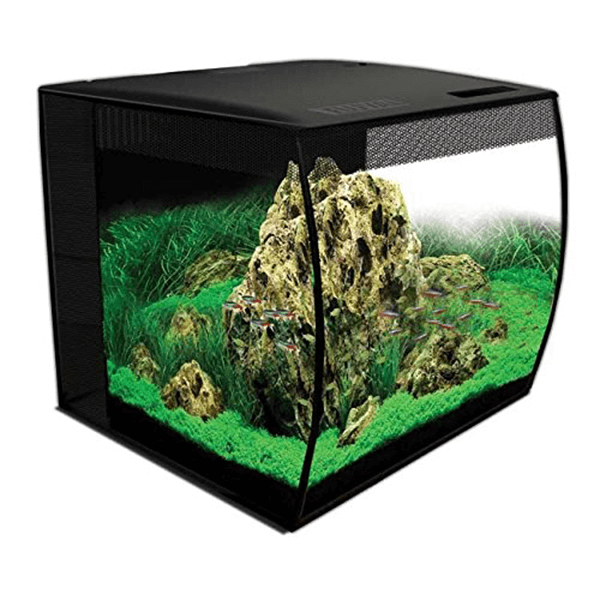15 Gallon Bow front aquarium