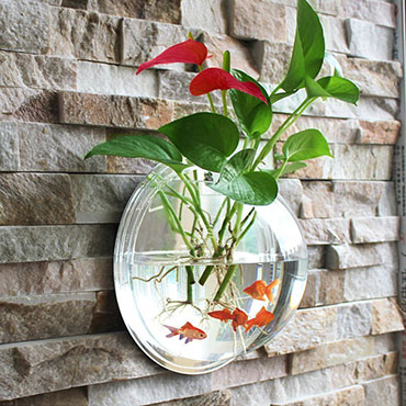 Hanging acrylic fish bowl