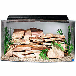 46 Gallon Bow Front Aquarium Combo Set